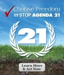 Agenda 21 is a comprehensive plan of action to be taken globally, nationally and locally by organizations of the United Nations System, Governments, and Major Groups in every area in which human impacts on the environment.