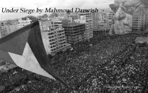 Mahmoud Darwish poetry page